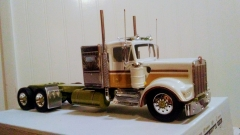 Something different from a snap together kenworth kit